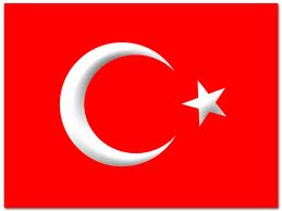 Turkish translation service
